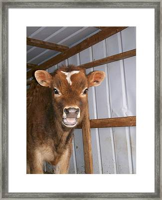 Yes I'm Talking To You Framed Print by Sara  Raber