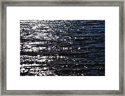 Ying And Yang Framed Print by Lisa Holland-Gillem