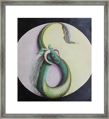 Ying Yang Dragon Framed Print by Maciel Cantelmo