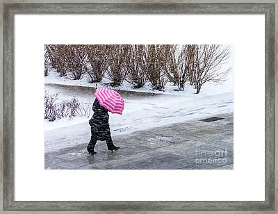 Yipes Stripes Framed Print by Susan Cole Kelly Impressions