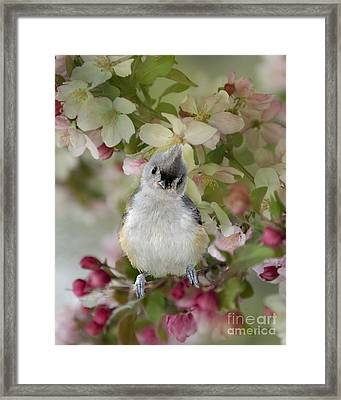 You Gotta Love Me Framed Print by Betty LaRue