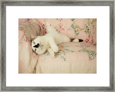 You Love Me Don't You Framed Print by Theresa Tahara