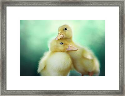 You Make Me Smile Framed Print by Amy Tyler