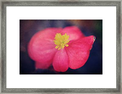 You Touch My Soul Framed Print by Laurie Search