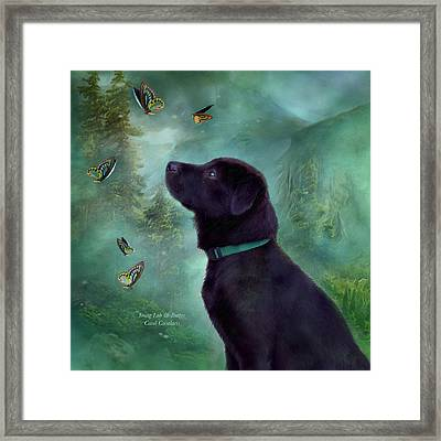 Young Lab And Buttys Framed Print by Carol Cavalaris