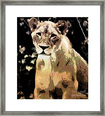 Young Lion Framed Print by Kathleen Struckle