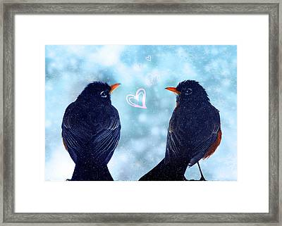 Young Robins In Love Framed Print by Lisa Knechtel