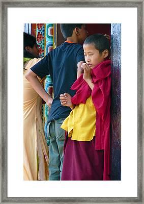 Young Tibetan Monk Framed Print by Dagmar Batyahav