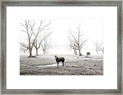 Your Morning Joe Framed Print by Scott Pellegrin