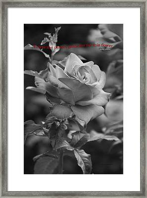 Your The Perfect Gardener Bw Framed Print by Thomas Woolworth