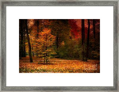 Youth Framed Print by Hannes Cmarits