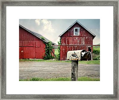 You've Got Mail Framed Print by Diana Angstadt