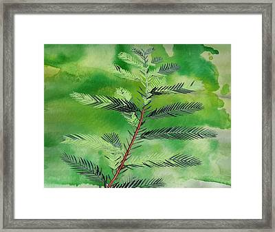 Yuletide Framed Print by Kandy Hurley
