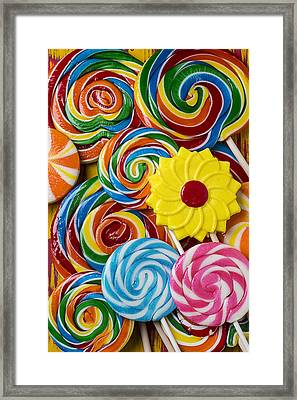 Yummy Candy Suckers Framed Print by Garry Gay
