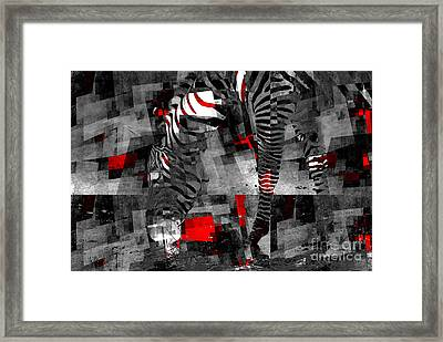 Zebra Art - 56a Framed Print by Variance Collections