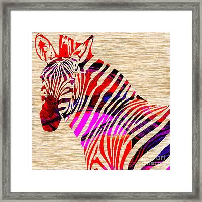 Zebra Framed Print by Marvin Blaine
