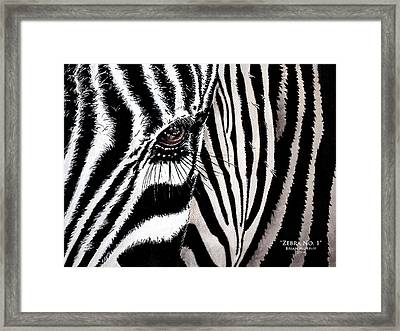 Zebra No. 1 Framed Print by Brian Murphy