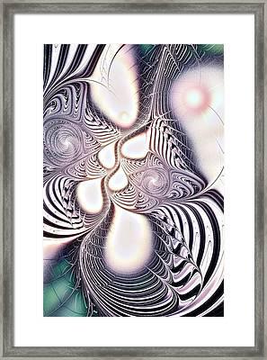 Zebra Phantasm Framed Print by Anastasiya Malakhova