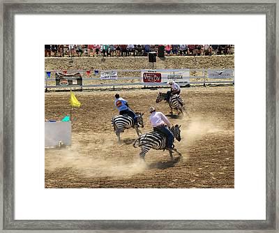 Zebra Races Framed Print by Donna Kennedy
