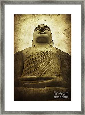 Zen Framed Print by Andrew Paranavitana