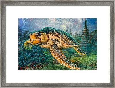Zen Garden Framed Print by Debra and Dave Vanderlaan