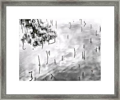 Zen Reflections Framed Print by Rochelle Berman