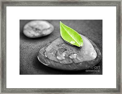 Zen Stones Framed Print by Elena Elisseeva