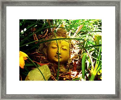 Zenful Slumber Framed Print by Sherry Dooley