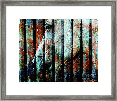 Zeniah Variation 11 Framed Print by Judy Wood