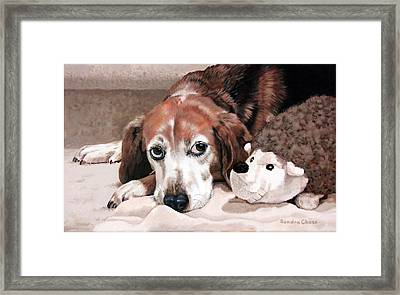 Zeppy And Lovey Framed Print by Sandra Chase