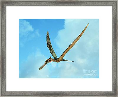 Zhenyuanopterus, A Genus Of Pterosaur Framed Print by Walter Myers