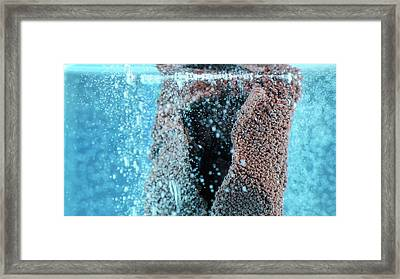 Zinc Reacting With Copper Sulphate Framed Print by Beautifulchemistry.net