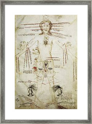 Zodiacal Man, 15th Century Framed Print by Spl