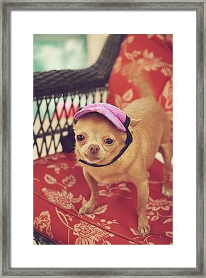 Zoe's Visor Framed Print by Laurie Search