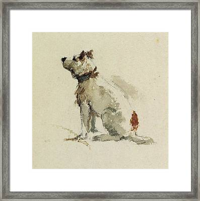 A Terrier - Sitting Facing Left Framed Print by Peter de Wint