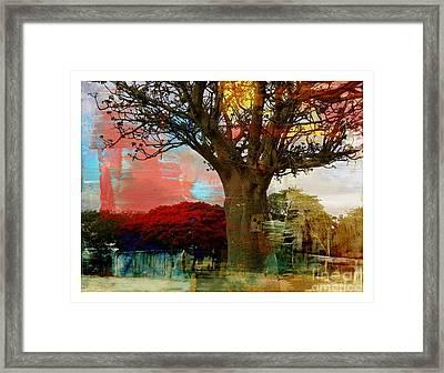 Baobab Framed Print by Fania Simon