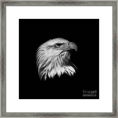 Black And White American Eagle Framed Print by Steve McKinzie