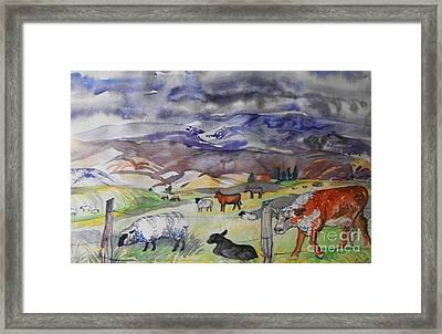 Mixed Farm Animals Graze In Field Framed Print by Annie Gibbons
