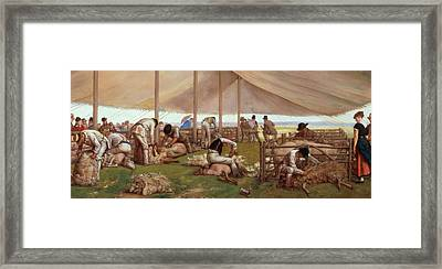 The Sheep Shearing Match Framed Print by Eyre Crowe