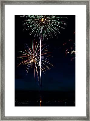20120706-dsc06455 Framed Print by Christopher Holmes