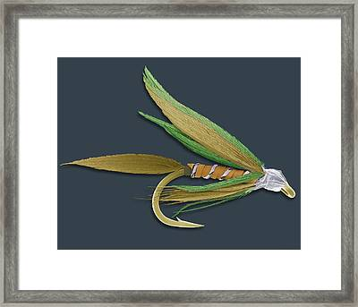 Barbed Fishing Fly, Sem Framed Print by Steve Gschmeissner