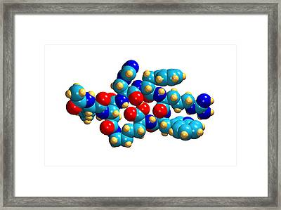 Bremelanotide Drug Molecule Framed Print by Dr Mark J. Winter