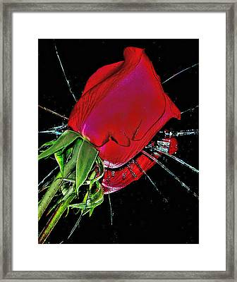 Broken Heart Framed Print by Sandy Poore