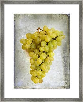 Bunch Of Grapes Framed Print by Bernard Jaubert