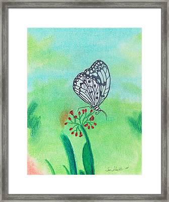 Butterfly Framed Print by Susan Schmitz