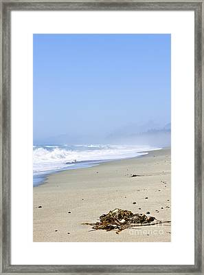 Coast Of Pacific Ocean In Canada Framed Print by Elena Elisseeva