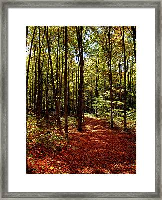 Come Walk With Me  Framed Print by Juergen Weiss