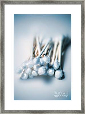 Cotton Swabs Framed Print by HD Connelly