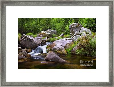 Creek Framed Print by Carlos Caetano