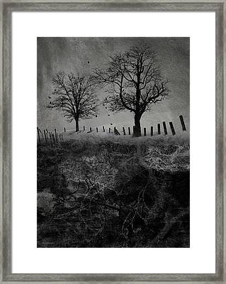 Dark Roost Framed Print by Ron Jones